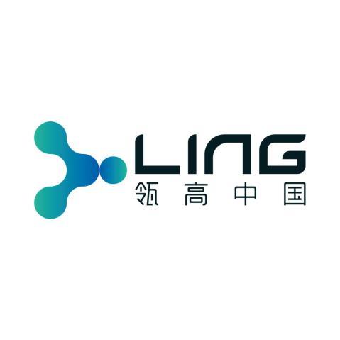 上海瓴高信息科技有限公司