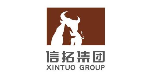 江苏信拓建设(集团)股份有限公司
