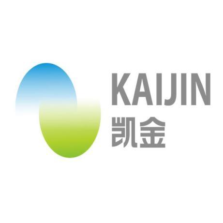广东凯金新能源科技股份有限公司