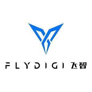 上海飞智电子科技有限公司